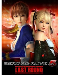 Dead or Alive 5 Last Round (PC Download)