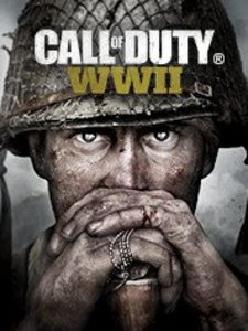 Call of Duty: WWII (PC Download)