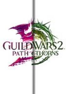 Guild Wars 2: Heart Of Thorns + Path Of Fire (PC Download)